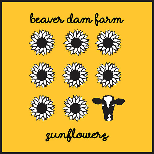 Beaver Dam Sunflowers